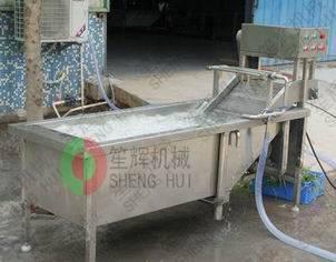 Bubble Vegetable Washer-QX-22/QX-32