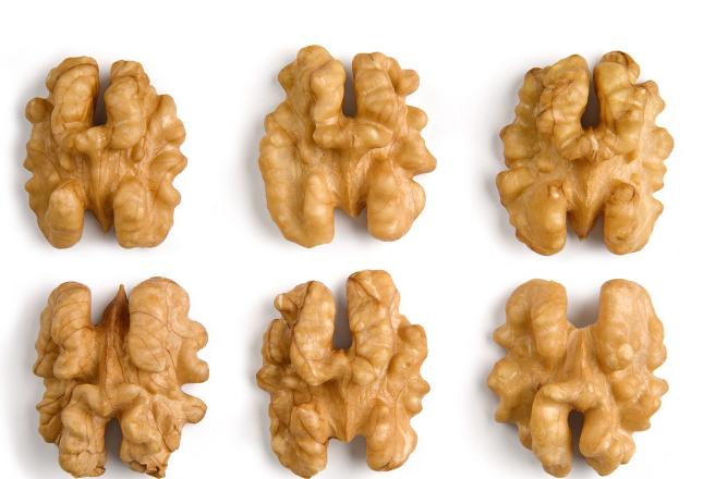 china walnut kernel