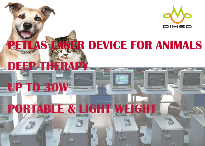 Veterinary Laser Therapy device- PETLAS- provide accelerated pain relief and healing