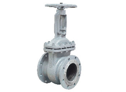 Cast Steel and Stainless Steel Gate Valve