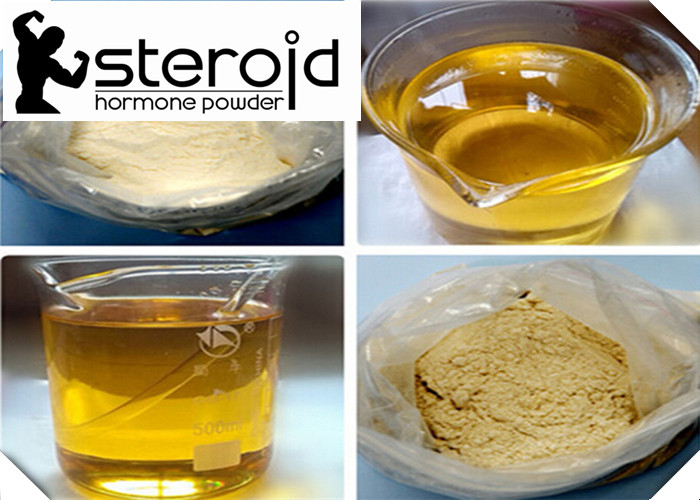 Trenbolone Acetate Finaplix Muscle Building Steroids Anabolic Steroid 10161-34-9