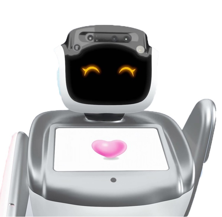 open API custom service intelligent social robot