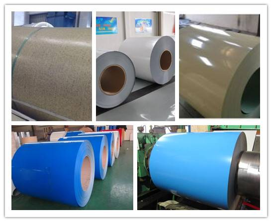 good price nice appearance ppgl steel coil