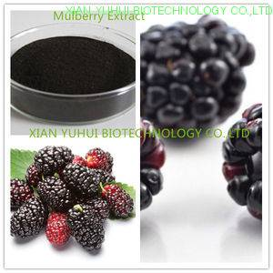 Mulberry Extract,mulberry fruit extract,mulberry fruit extract powder