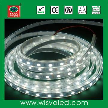 12V 60leds/m waterproof white led strip