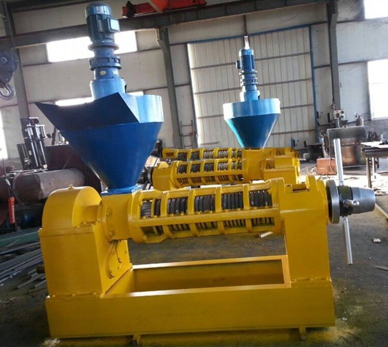 economical China machine rapeseed oil press machine