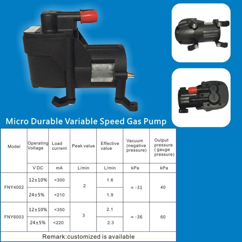 Micro Durable Variable Speed Gas Pump
