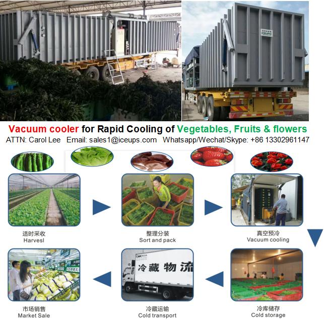 Vegetables Vacuum Cooler of 2000kg Capacity