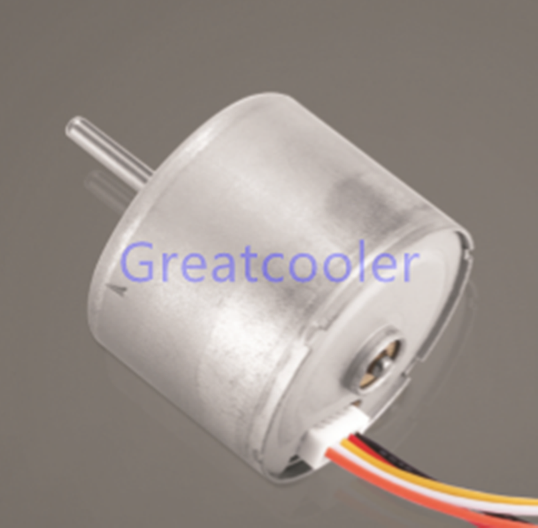 WBDM2419 24mm Brushless DC Motors