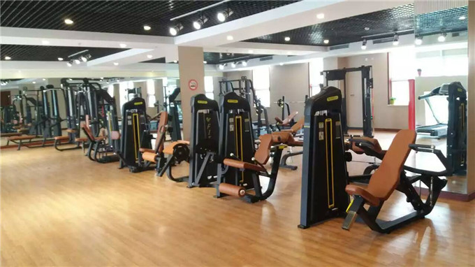 Gym equipment of Myoung Fitness