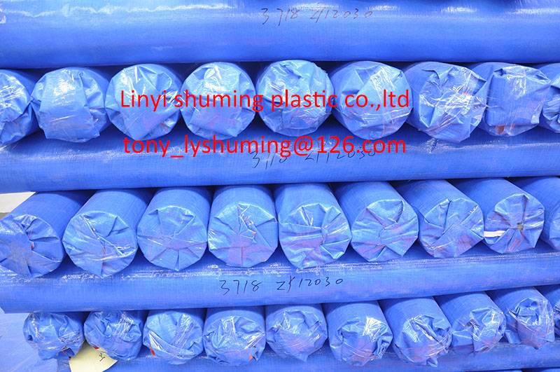 Blue/blue PE tarpaulin rolls,ready to shipment