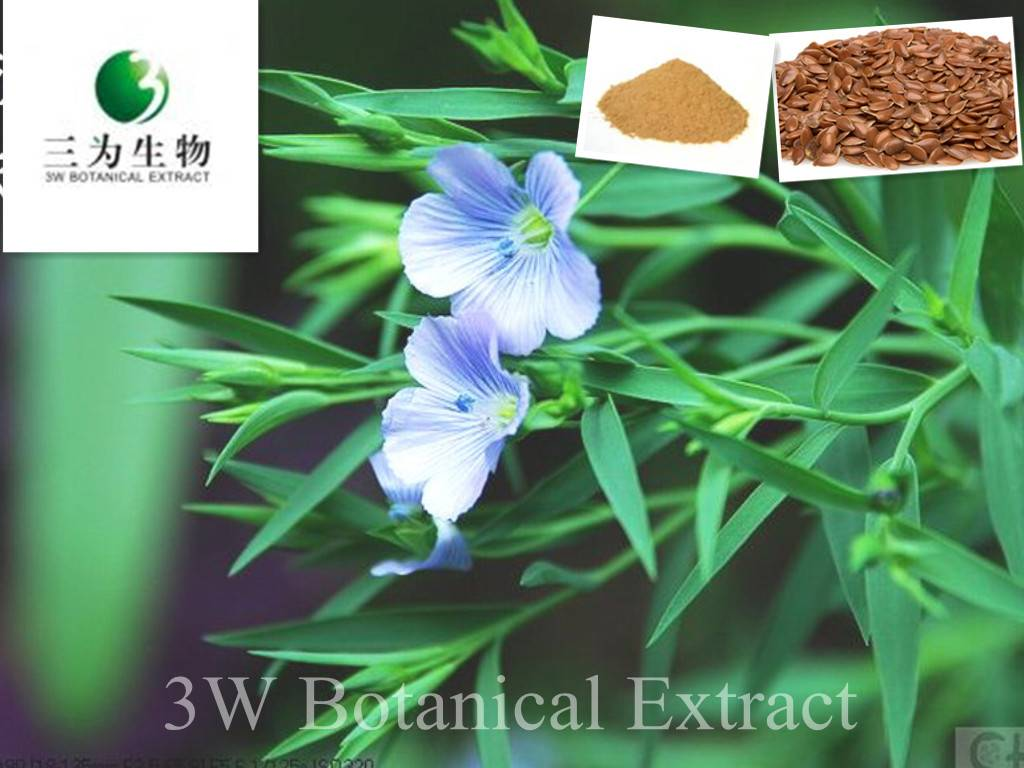 Flax Seed Extract(sales05@3wbio.com)