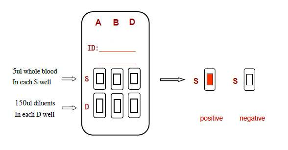 One Step ABO & RhD Blood Grouping Kit  (Solid-phase method)
