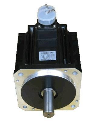 123mm AC Servo Motor