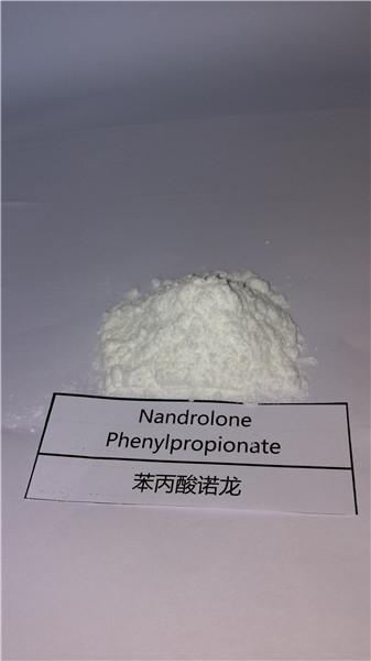 High Quality Nandrolone Phenylpropionate Powder Npp 62-90-8