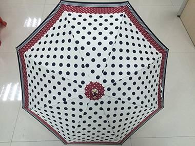 21.5 Inch 8 Ribs 8mm Straight Auto Umbrella