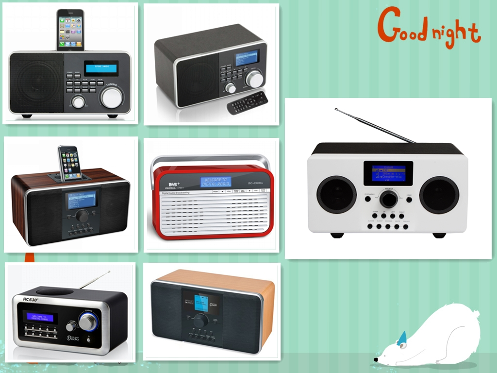 DAB/DAB Digital Radio, i-docking(BC-900iDA)