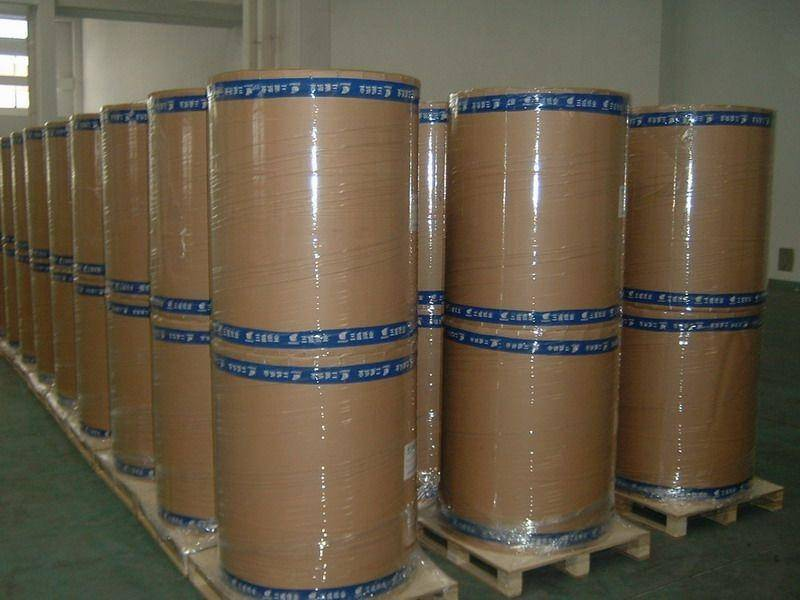 New product  the world class Jumbo rolls thermal  paper