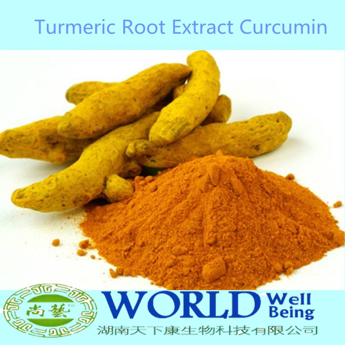 Hot Selling High Quality 95% Turmeric Powder,Curcumin Extract Turmeric Root Extract Powder,Turmeric
