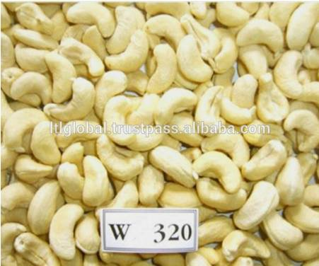 CASHEW NUT WHITE WW320/ WW240 WITH BEST PRICE