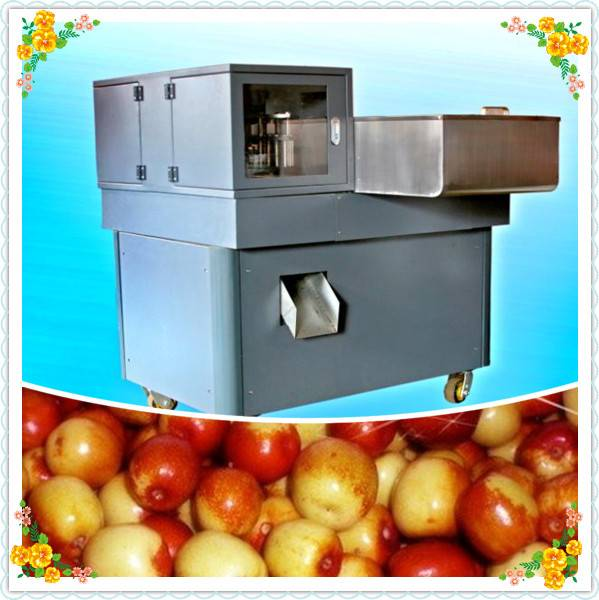 High Quality Date Pitting Machine | Red Date Kernel Remover