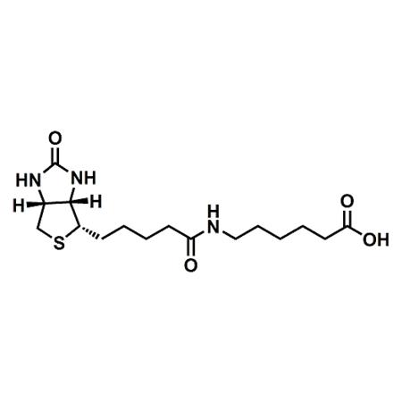 (+)-Biotin-LC;6-Biotinamidohexanoic acid ;CAS#72040-64-3