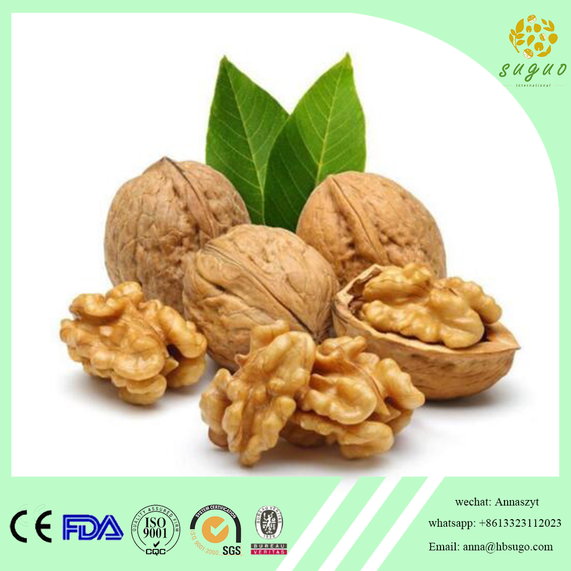 2017 Crop best quality walnut kernel