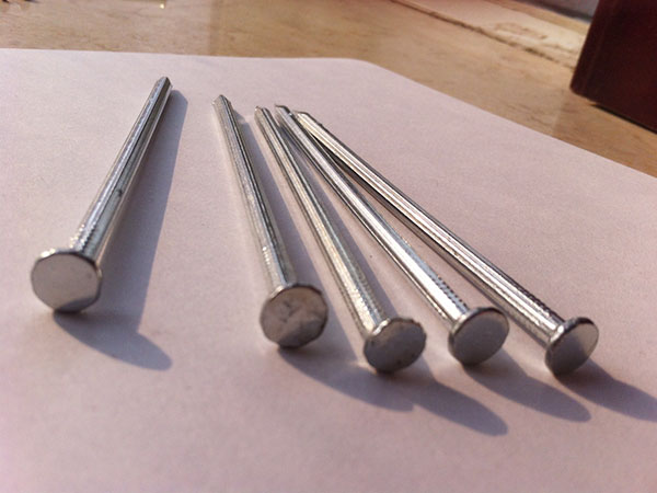 Polished Common Iron Nail