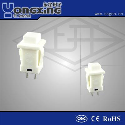 IP40 1A 250V AC2 pin Momentary electrical double push button switch