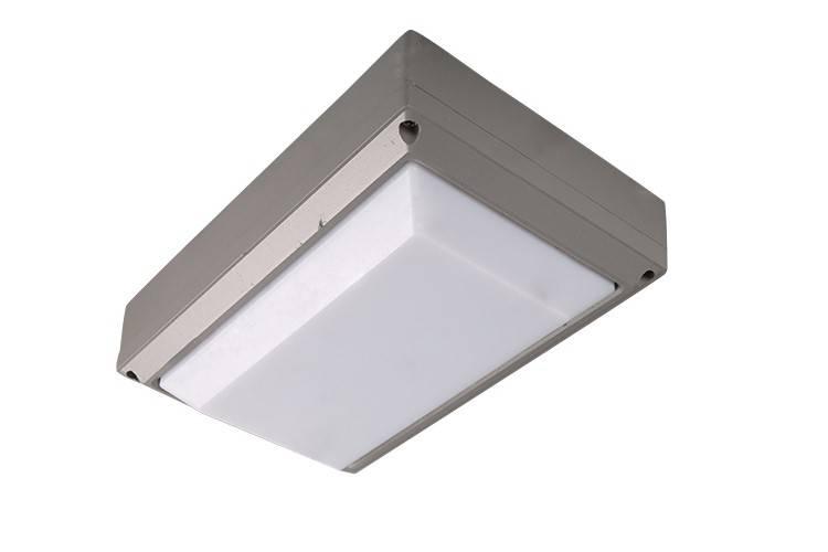LED Wall lamp 20w IK65 IK10 best quality 3 years warranty