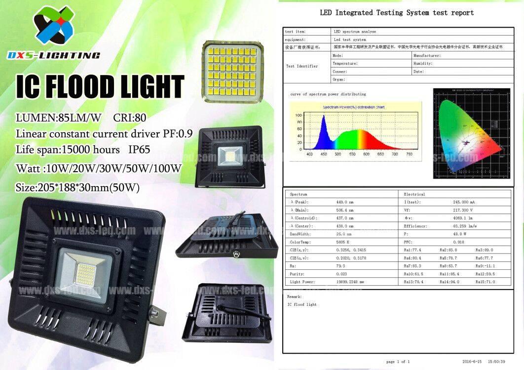 DXS IC flood light