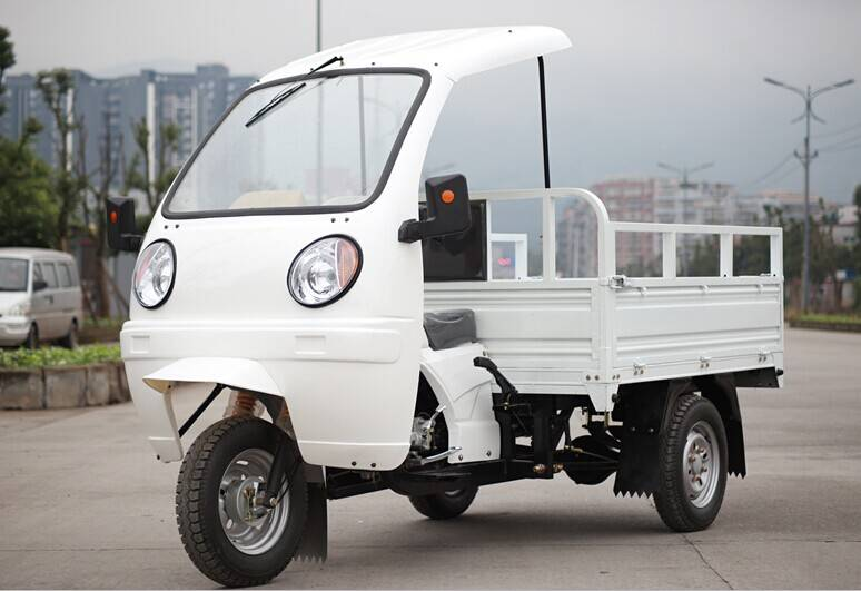 gasoline 3 wheel cargo motorcycle with ABS canopy