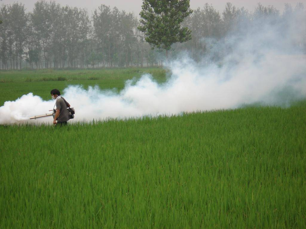 Thermal Fogging Machine farm sprayer Power sprayer