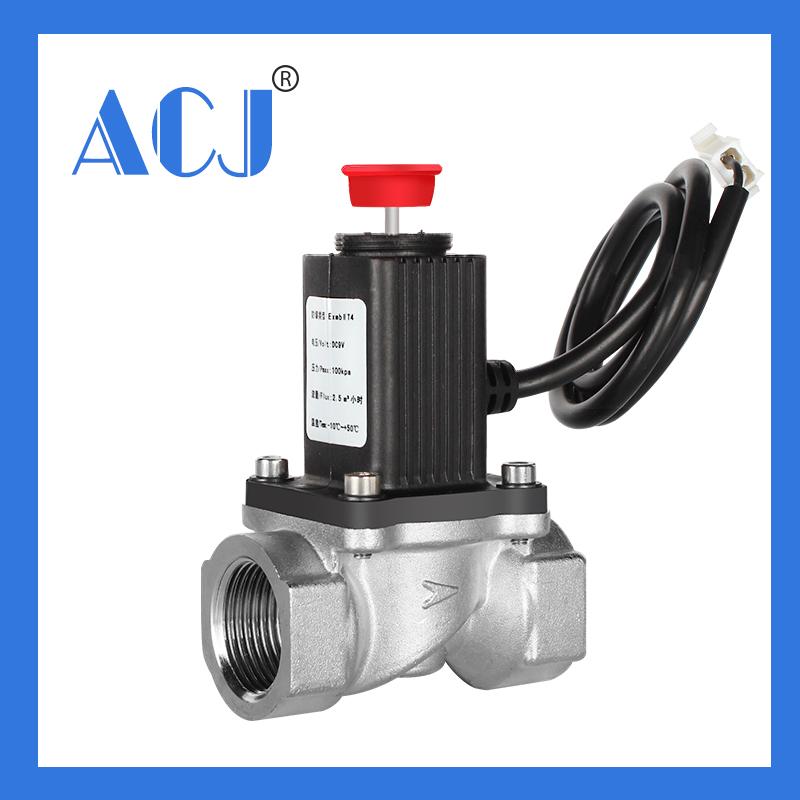 House DC12V lpg gas leak shut-off valve