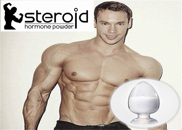 Alkali 99.27% Natural Sexual Male Enhancement Steroids JinYang Base Steroids
