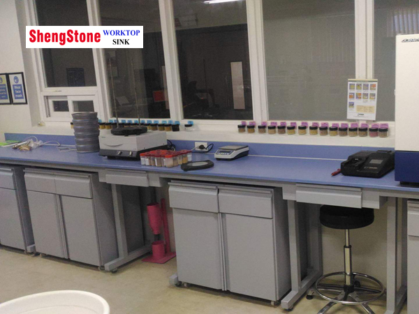 Laboratory bench capable of customizing color