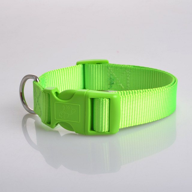 Basic Nylon Dog collar