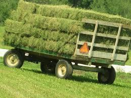 Alfalfa Hay-Bermuda Grass-Klein Grass-Oat Hay-Wheat Hay-Bermuda Straw