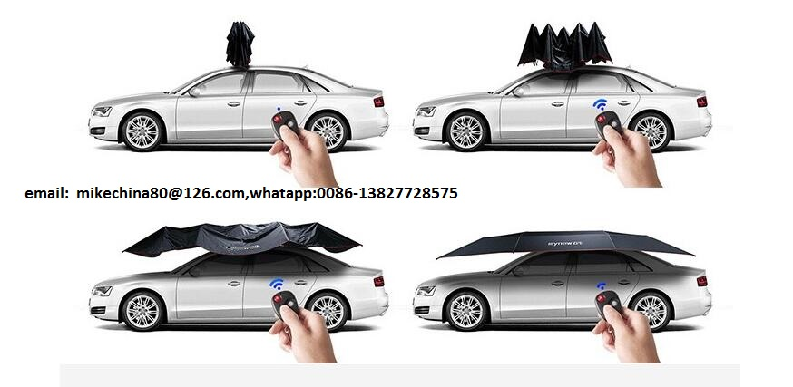 umbrella for car