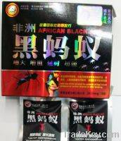Hot Selling Africa Black Ant With Anti Erectile Dysfunction