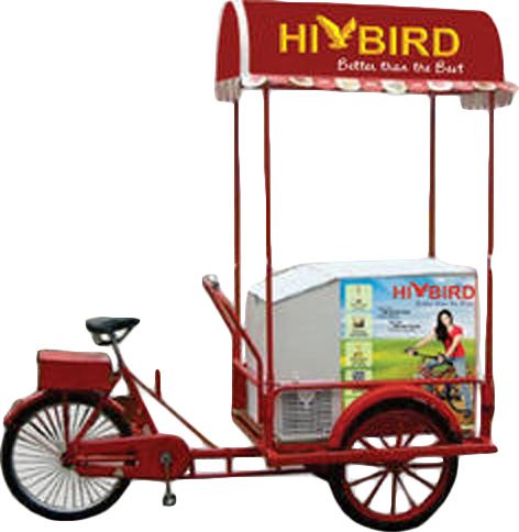 Normal tricycle with 208L solar freezer