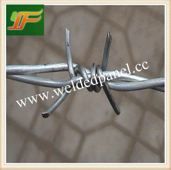 China supply best quality galvanized barbed wire/PVC coated barbed wire/barb wire fencing(Factory)