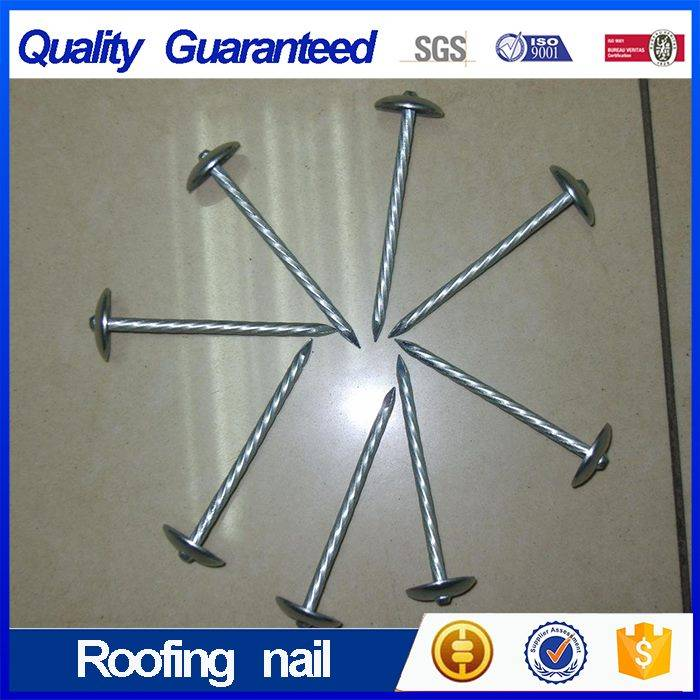 Galvanized Roofing Nail with Smooth Shank