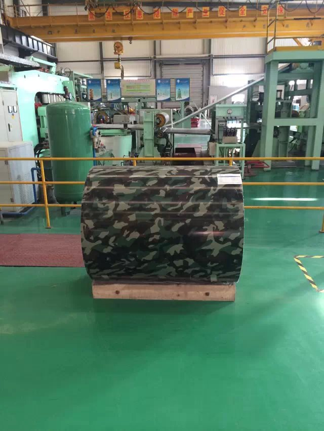 BV tree color PPGI/prepainted galvanized steel coil