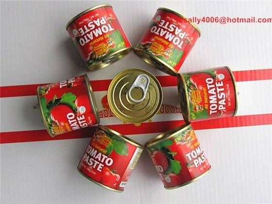 Natural Fresh Tin Canned Tomato Paste