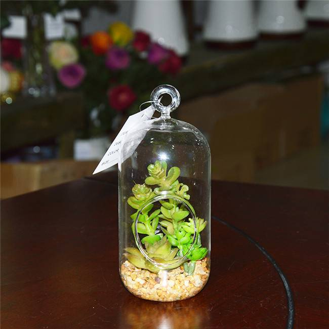 Hanging Glass Terrarium Artificial Succulent Plants