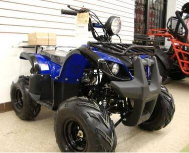 Paypal Accepted Cheap Factory ATV 125cc Fully Automatic with Reverse 1 Year Engine Warranty