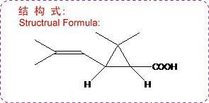 Cis Chrysanthemic acid