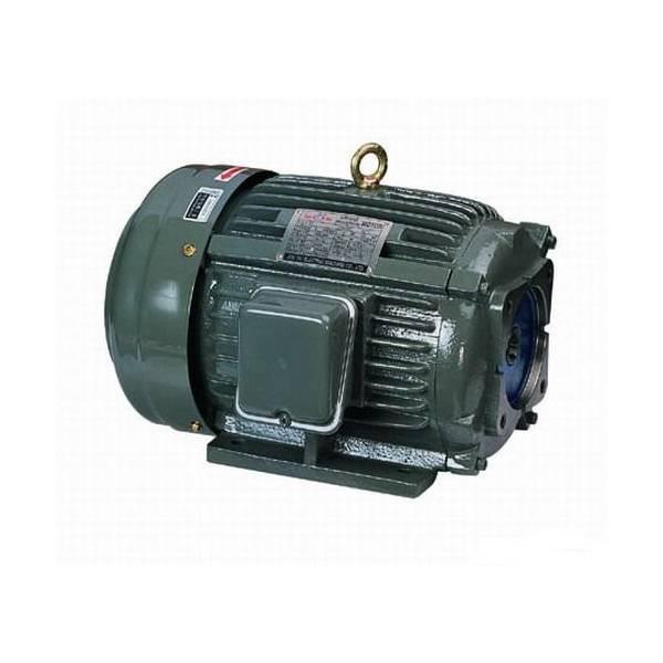 CHYUN TSEH  Motor CHYUN TSEH Oil Pump Motor