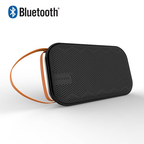 Portable Bluetooth wireless speaker system with with microphone